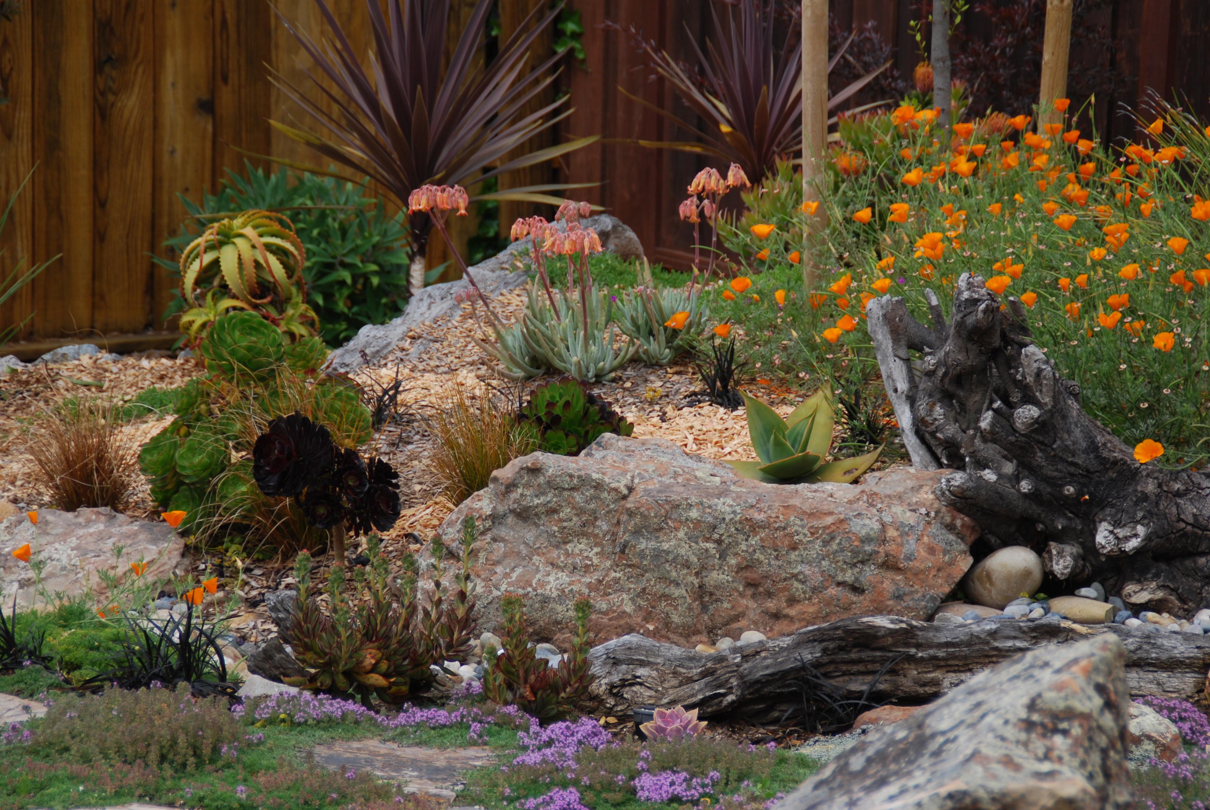 Monarch Gardens   Flowers & Foliage